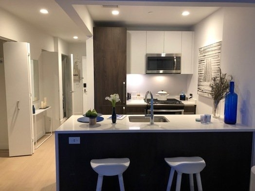 Studio, Long Island City Rental in NYC for $2,600 - Photo 2
