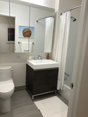 2 Bedrooms, Long Island City Rental in NYC for $4,770 - Photo 2