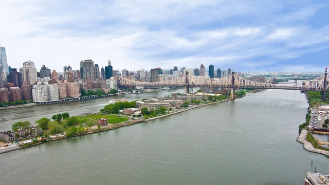 1 Bedroom, Hunters Point Rental in NYC for $2,800 - Photo 2