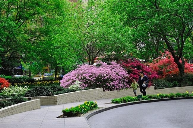2 Bedrooms, Sutton Place Rental in NYC for $5,195 - Photo 1