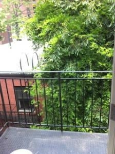 2 Bedrooms, Rose Hill Rental in NYC for $3,617 - Photo 2