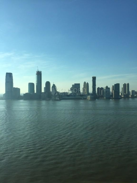 3 Bedrooms, Battery Park City Rental in NYC for $11,500 - Photo 1