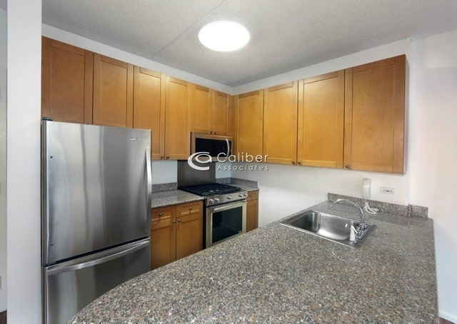 1 Bedroom, Civic Center Rental in NYC for $3,090 - Photo 1