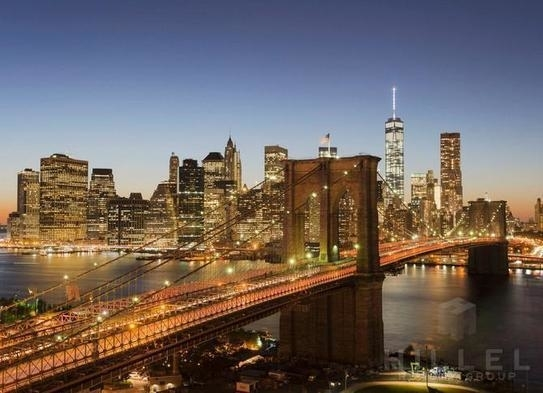 2 Bedrooms, DUMBO Rental in NYC for $5,516 - Photo 1