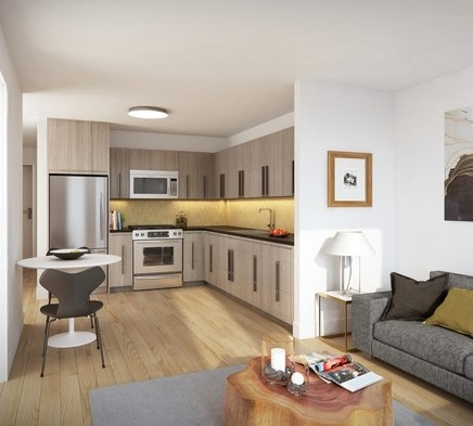 2 Bedrooms, Fort Greene Rental in NYC for $4,987 - Photo 2