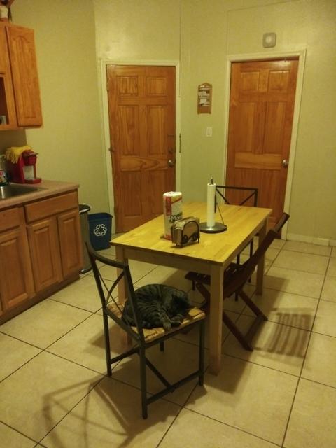2 Bedrooms, Ridgewood Rental in NYC for $800 - Photo 1