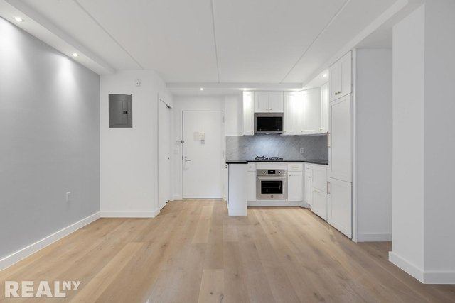 1 Bedroom, Two Bridges Rental in NYC for $5,644 - Photo 1
