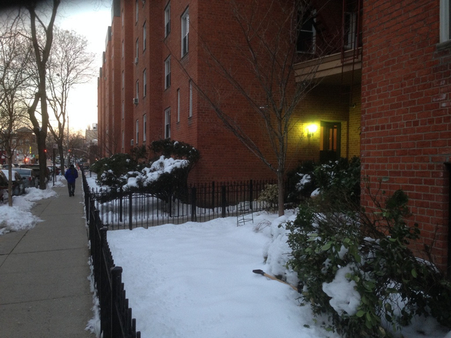 Studio, Jackson Heights Rental in NYC for $1,375 - Photo 2