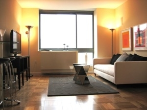 2 Bedrooms, Downtown Brooklyn Rental in NYC for $3,650 - Photo 2