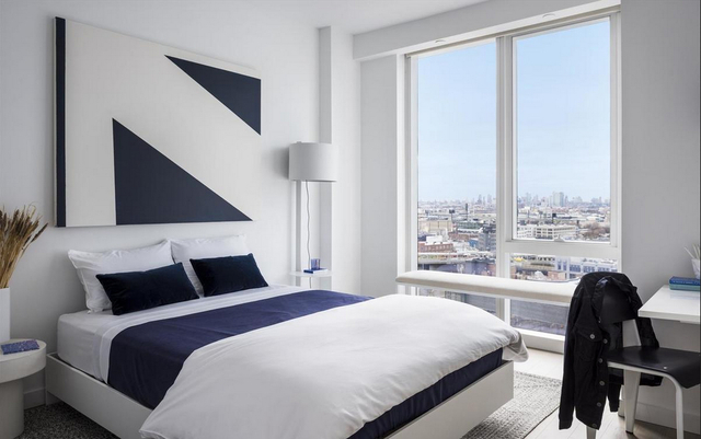 1 Bedroom, Long Island City Rental in NYC for $3,030 - Photo 2