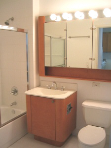 1 Bedroom, Civic Center Rental in NYC for $3,050 - Photo 1