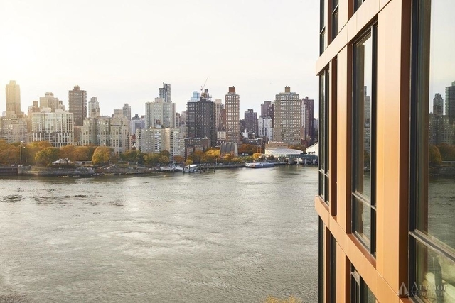 2 Bedrooms, Astoria Rental in NYC for $3,475 - Photo 2