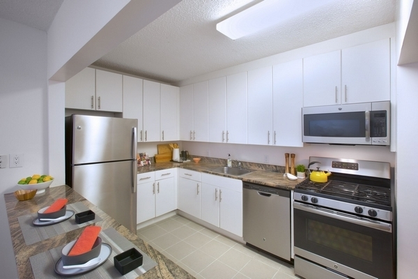 1 Bedroom, Newport Rental in NYC for $3,020 - Photo 2