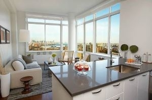 1 Bedroom, Fort Greene Rental in NYC for $3,375 - Photo 1