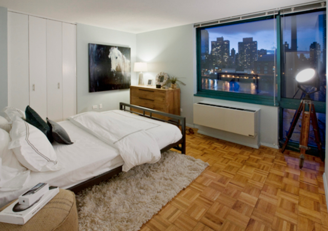 1 Bedroom, Roosevelt Island Rental in NYC for $2,658 - Photo 2