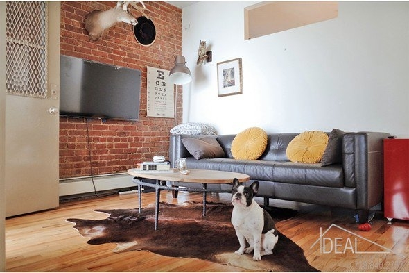 1 Bedroom, Central Slope Rental in NYC for $2,800 - Photo 1