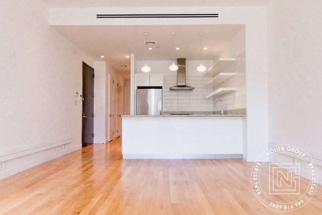 2 Bedrooms, Two Bridges Rental in NYC for $6,880 - Photo 1