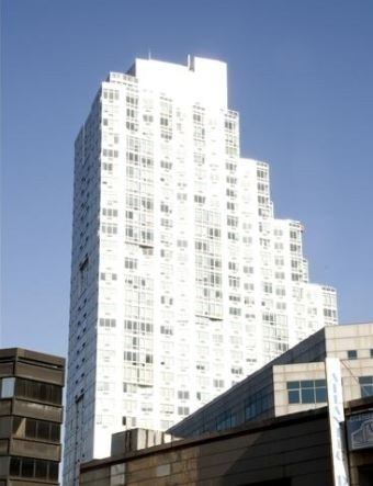 1 Bedroom, Fort Greene Rental in NYC for $3,392 - Photo 1