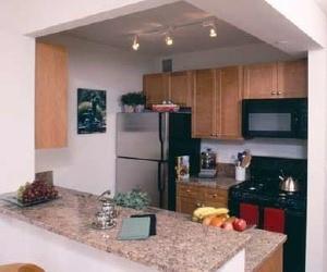 Studio, East Harlem Rental in NYC for $2,658 - Photo 1