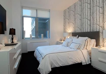3 Bedrooms, Tribeca Rental in NYC for $11,000 - Photo 2