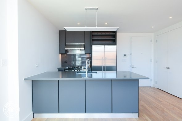 2 Bedrooms, Crown Heights Rental in NYC for $3,299 - Photo 2