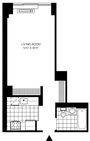 Studio, Long Island City Rental in NYC for $2,730 - Photo 2