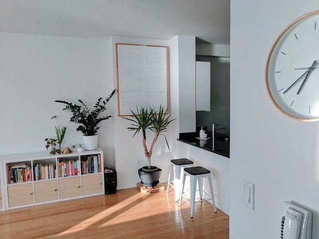 1 Bedroom, Hunters Point Rental in NYC for $2,665 - Photo 2