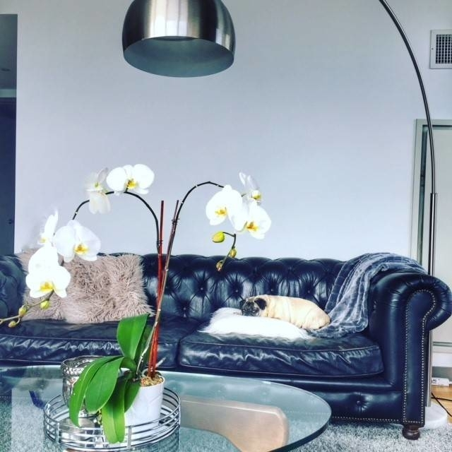 1 Bedroom, Financial District Rental in NYC for $5,260 - Photo 2