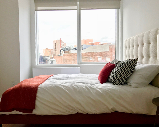 1 Bedroom, Fort Greene Rental in NYC for $3,800 - Photo 2