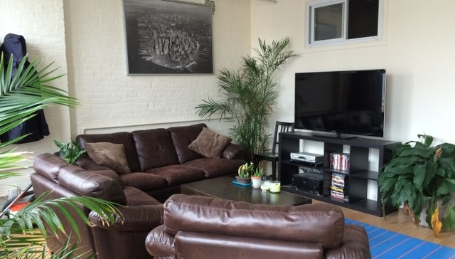 3 Bedrooms, Tribeca Rental in NYC for $6,000 - Photo 2