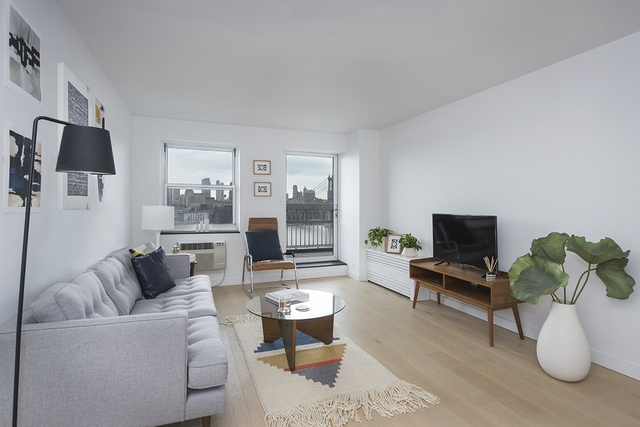 2 Bedrooms, Two Bridges Rental in NYC for $4,550 - Photo 1