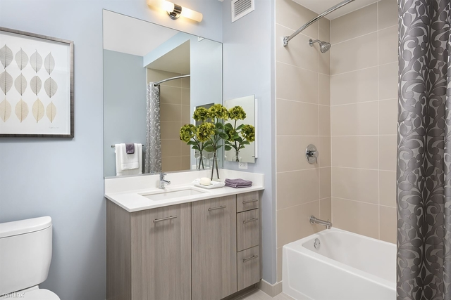2 Bedrooms, The Loop Rental in Chicago, IL for $3,700 - Photo 2