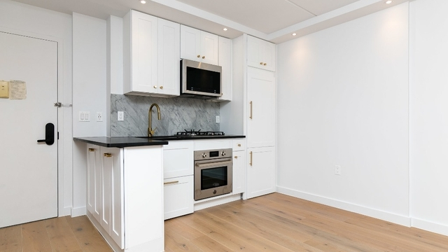 1 Bedroom, Two Bridges Rental in NYC for $4,025 - Photo 2