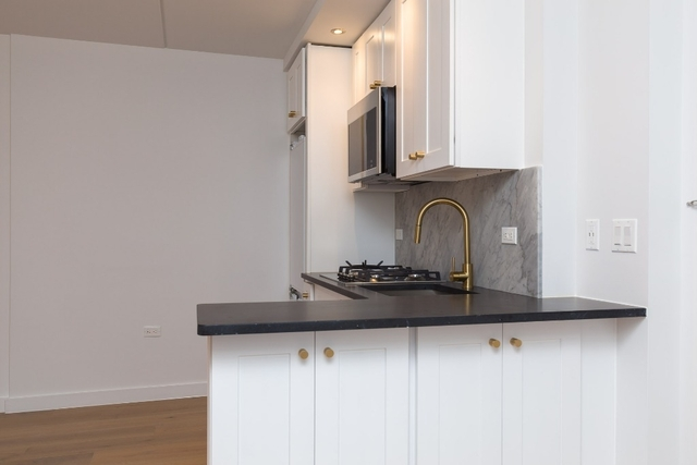1 Bedroom, Two Bridges Rental in NYC for $3,690 - Photo 2
