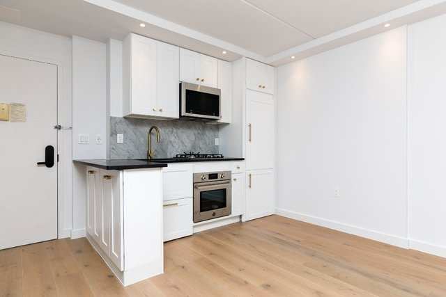1 Bedroom, Two Bridges Rental in NYC for $4,075 - Photo 1