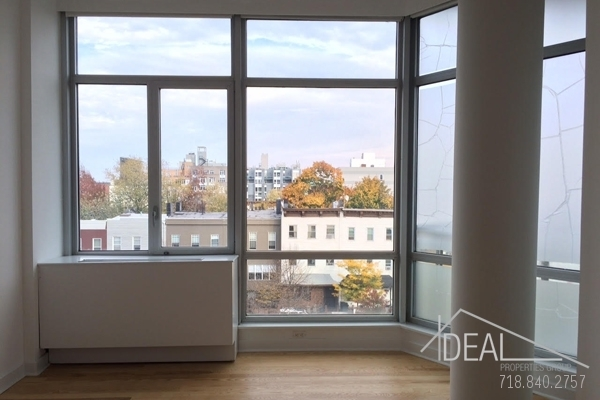 2 Bedrooms, Clinton Hill Rental in NYC for $4,095 - Photo 2