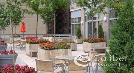 2 Bedrooms, Theater District Rental in NYC for $4,295 - Photo 2