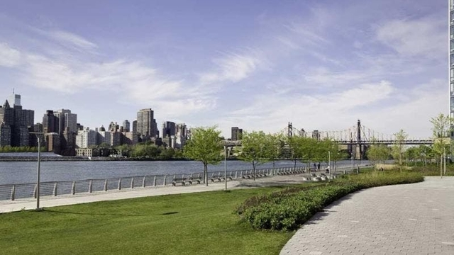 Studio, Hunters Point Rental in NYC for $2,925 - Photo 2