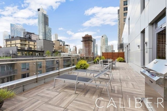 1 Bedroom, Long Island City Rental in NYC for $3,300 - Photo 2
