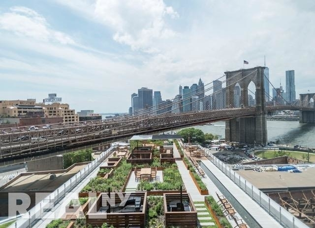 1 Bedroom, DUMBO Rental in NYC for $3,877 - Photo 2