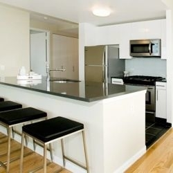 2 Bedrooms, Hunters Point Rental in NYC for $5,684 - Photo 1