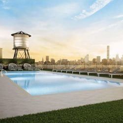 1 Bedroom, Long Island City Rental in NYC for $3,323 - Photo 1