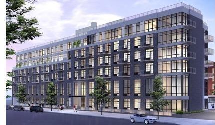2 Bedrooms, Mott Haven Rental in NYC for $3,575 - Photo 1