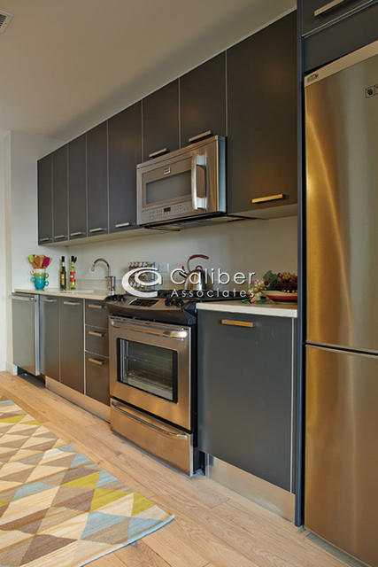 Studio, Long Island City Rental in NYC for $2,430 - Photo 2