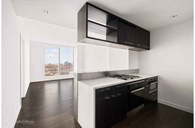 1 Bedroom, Two Bridges Rental in NYC for $4,150 - Photo 1