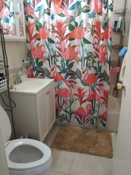 2 Bedrooms, Bedford-Stuyvesant Rental in NYC for $975 - Photo 2