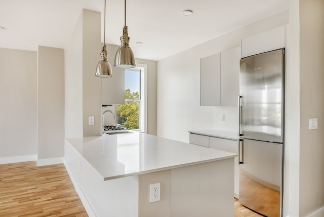 1 Bedroom, Clinton Hill Rental in NYC for $3,369 - Photo 2