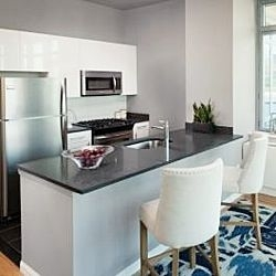 1 Bedroom, Hunters Point Rental in NYC for $3,483 - Photo 1