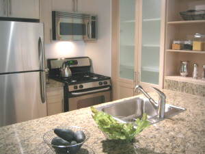 1 Bedroom, Financial District Rental in NYC for $4,045 - Photo 1