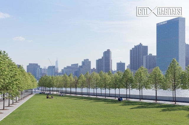 Studio, Roosevelt Island Rental in NYC for $2,295 - Photo 2